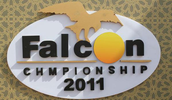 falcon_comp2011-12