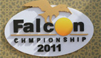 Visit to the Falcon Competition, Dubai 2011 image